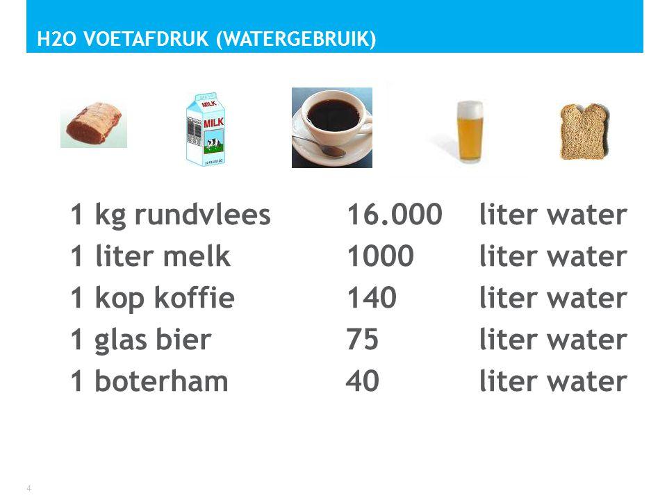 H2O voetafdruk (watergebruik)