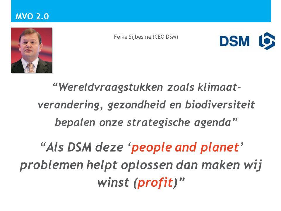 Feike Sijbesma (CEO DSM)