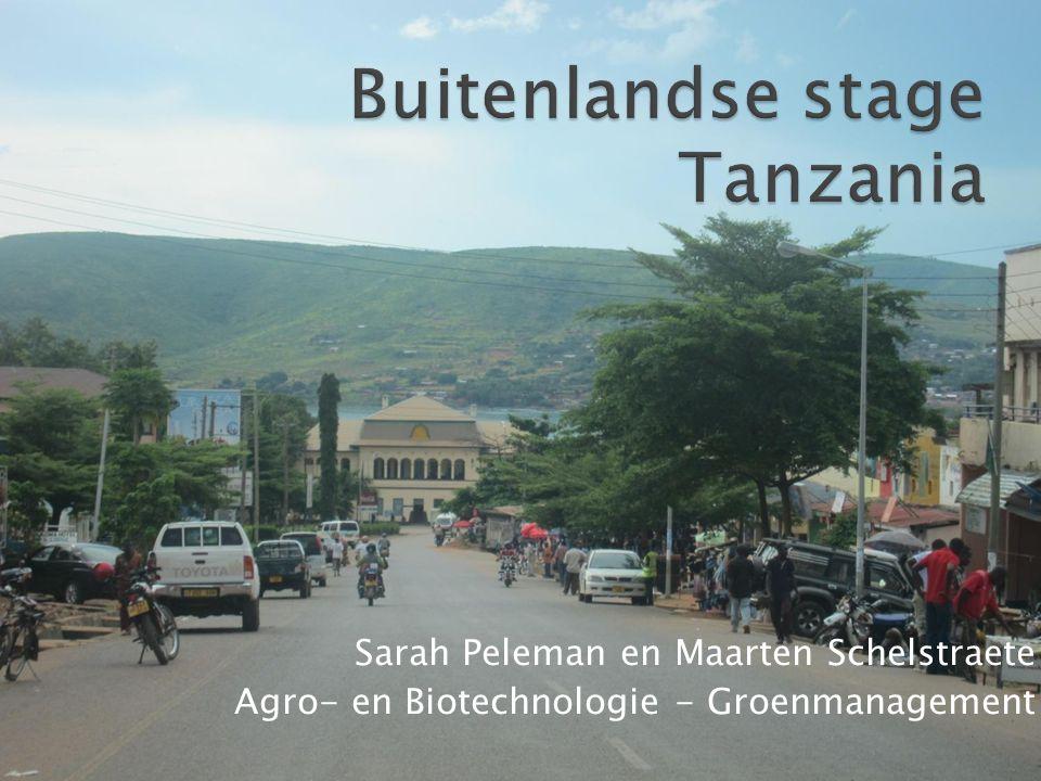 Buitenlandse stage Tanzania