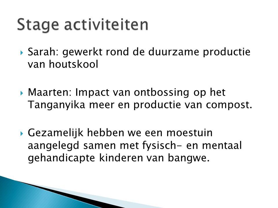Stage activiteiten Sarah: gewerkt rond de duurzame productie van houtskool.