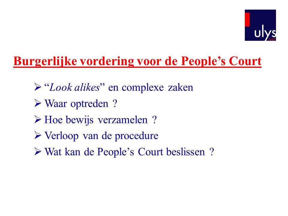 Burgerlijke vordering voor de People's Court