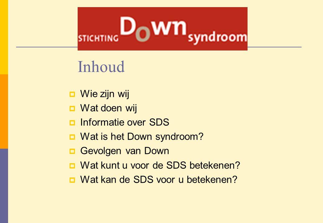 Inhoud Wie zijn wij Wat doen wij Informatie over SDS