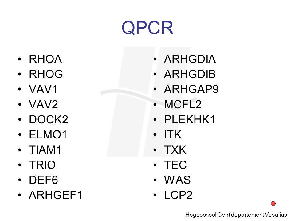 QPCR RHOA RHOG VAV1 VAV2 DOCK2 ELMO1 TIAM1 TRIO DEF6 ARHGEF1 ARHGDIA