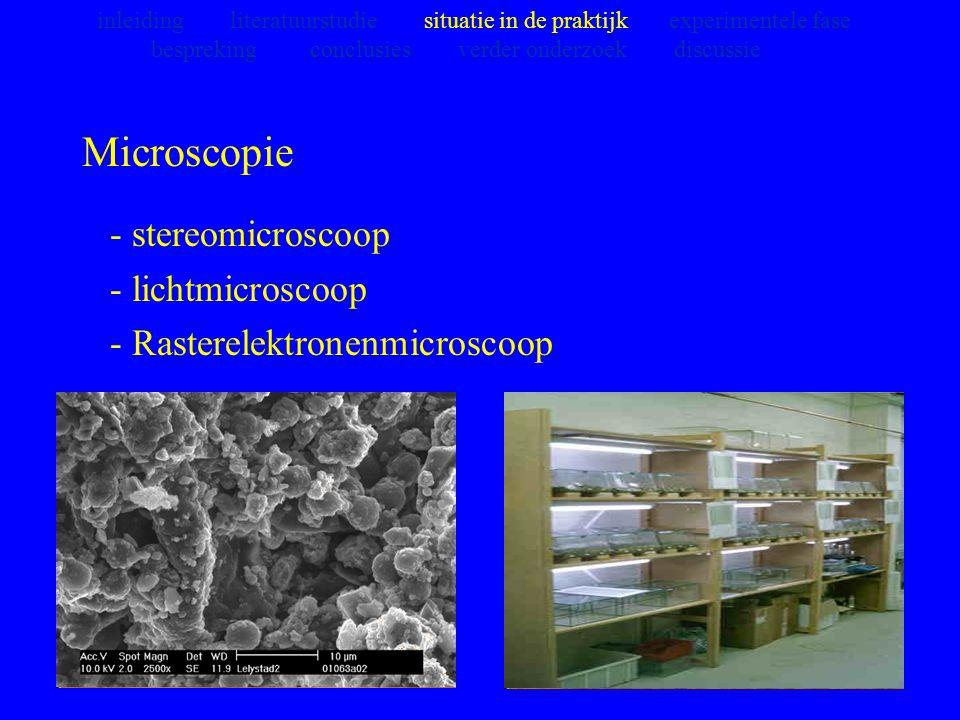 Microscopie - stereomicroscoop - lichtmicroscoop