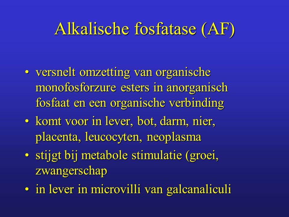 Alkalische fosfatase (AF)