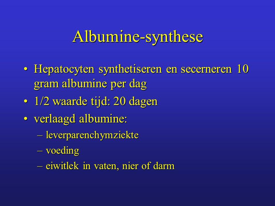 Albumine-synthese Hepatocyten synthetiseren en secerneren 10 gram albumine per dag. 1/2 waarde tijd: 20 dagen.