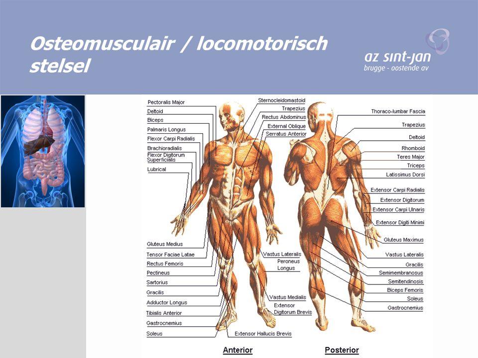 Osteomusculair / locomotorisch stelsel