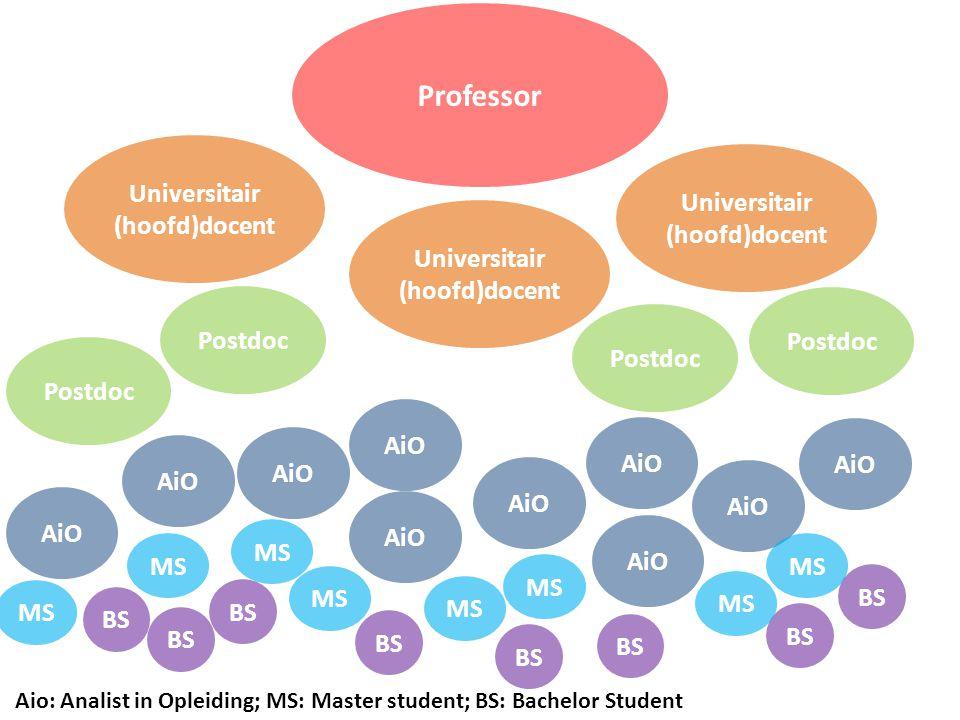 Professor Universitair (hoofd)docent Universitair (hoofd)docent