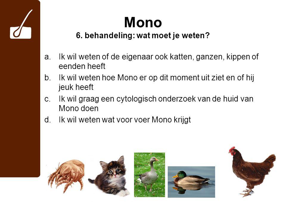 Mono 6. behandeling: wat moet je weten