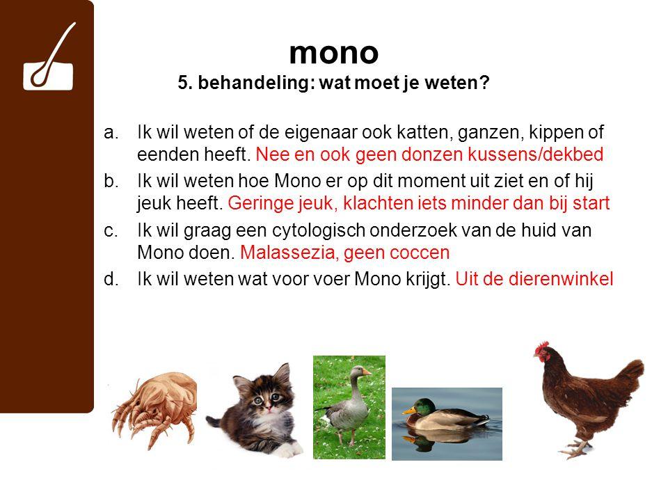 mono 5. behandeling: wat moet je weten