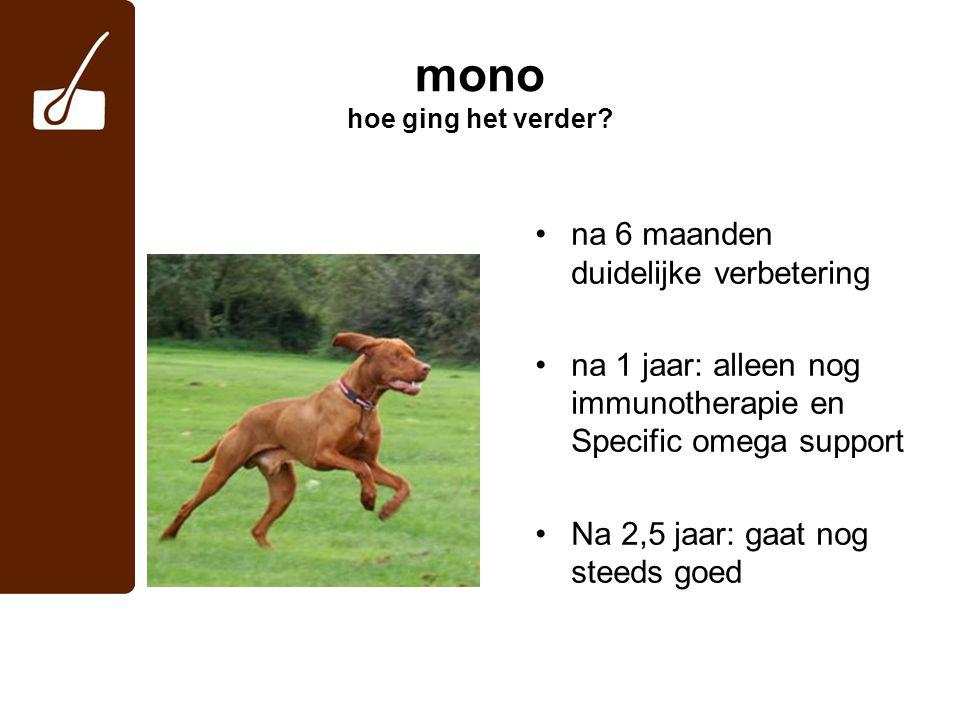 mono hoe ging het verder