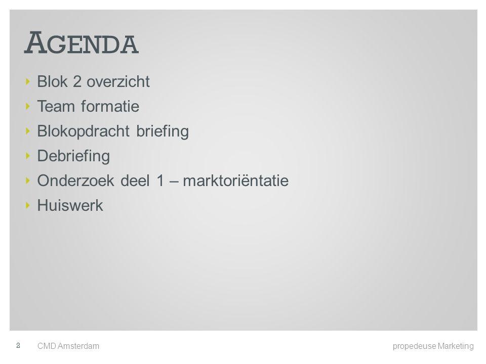Agenda Blok 2 overzicht Team formatie Blokopdracht briefing Debriefing