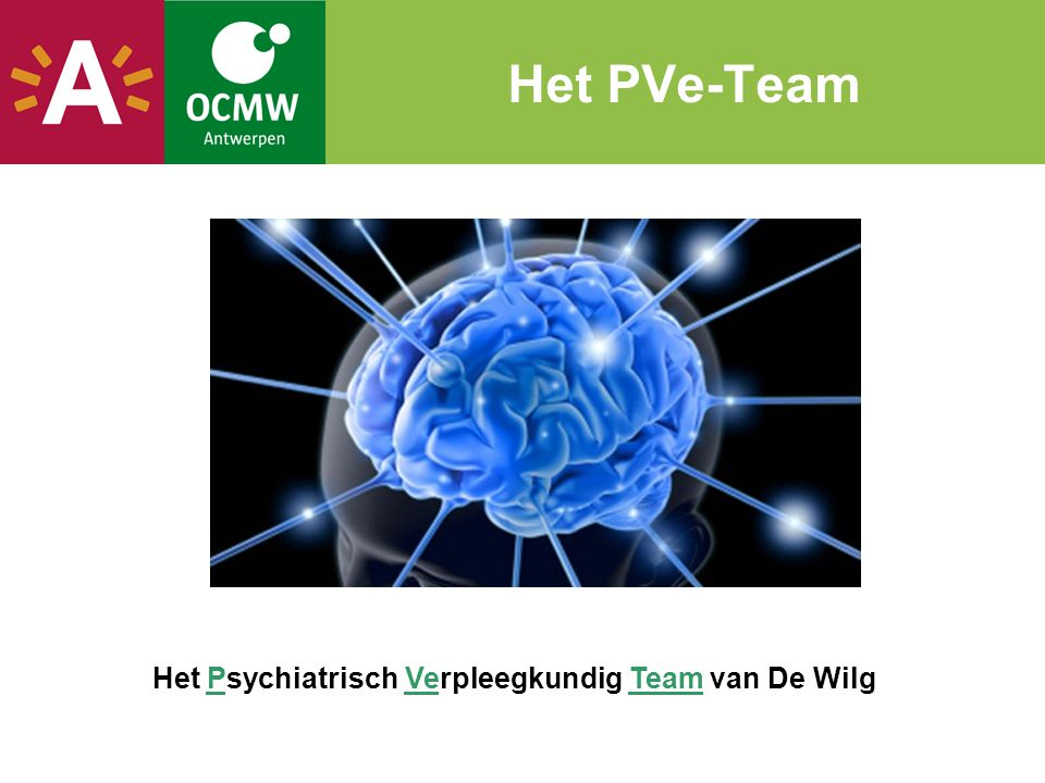 Het Psychiatrisch Verpleegkundig Team van De Wilg