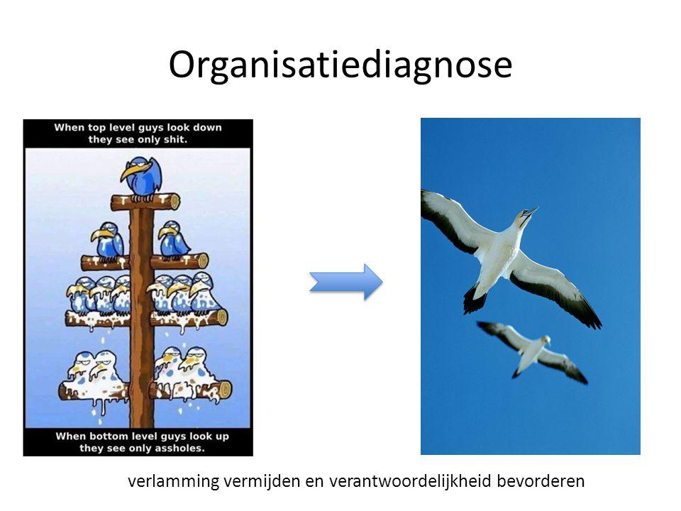 Organisatiediagnose verlamming vermijden en verantwoordelijkheid bevorderen