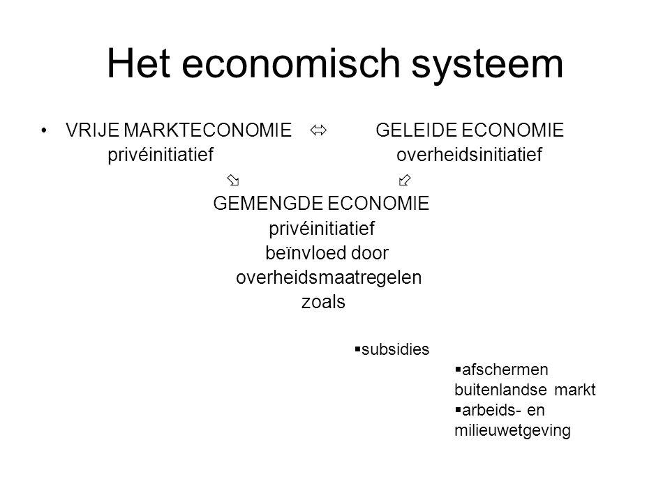 Het economisch systeem