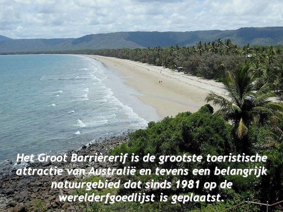 Het Groot Barrièrerif is de grootste toeristische attractie van Australië en tevens een belangrijk natuurgebied dat sinds 1981 op de werelderfgoedlijst is geplaatst.