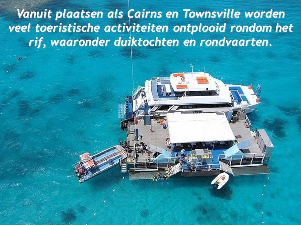 Vanuit plaatsen als Cairns en Townsville worden veel toeristische activiteiten ontplooid rondom het rif, waaronder duiktochten en rondvaarten.
