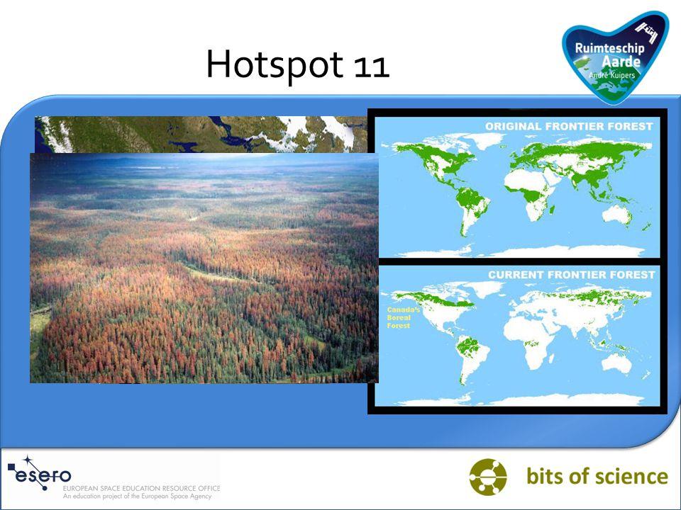 Hotspot 11 Introvraag: welke biotoop staat afgebeeld op deze foto