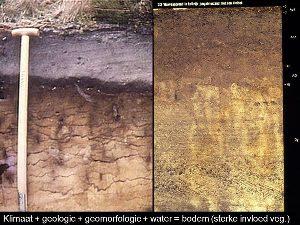 Klimaat + geologie + geomorfologie + water = bodem (sterke invloed veg