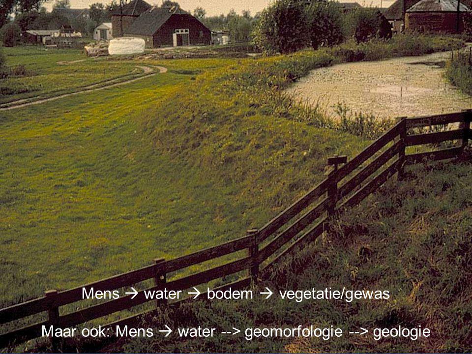 Mens  water  bodem  vegetatie/gewas