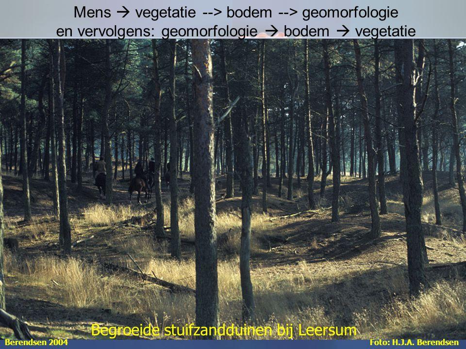 Mens  vegetatie --> bodem --> geomorfologie