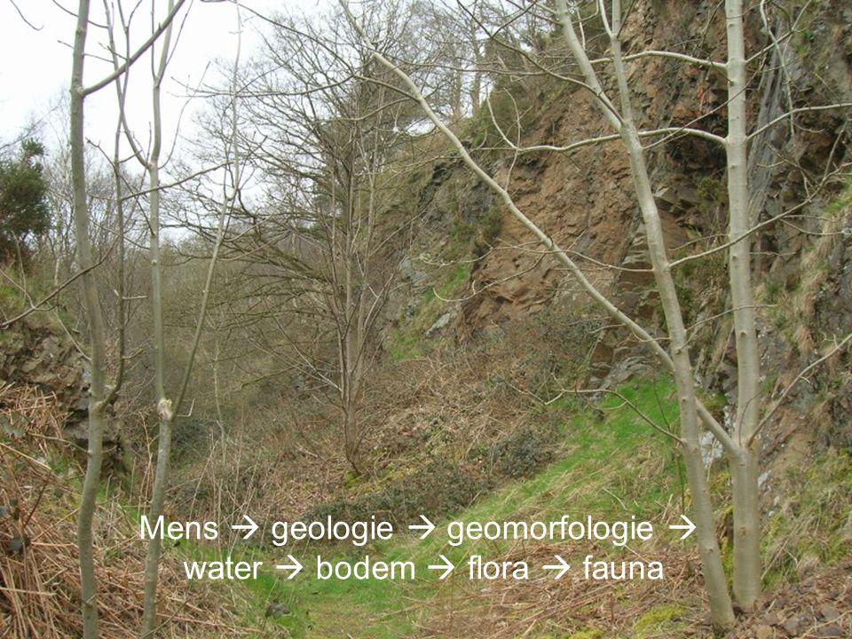Mens  geologie  geomorfologie  water  bodem  flora  fauna
