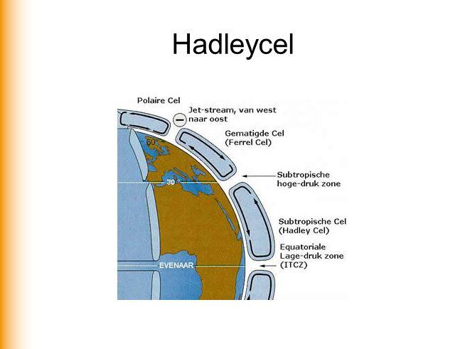 Hadleycel