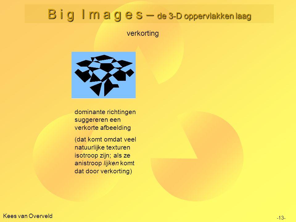 B i g I m a g e s – de 3-D oppervlakken laag