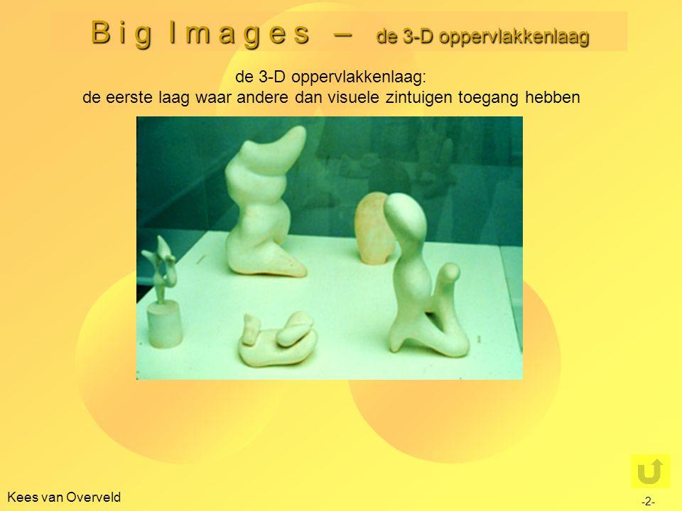 B i g I m a g e s – de 3-D oppervlakkenlaag