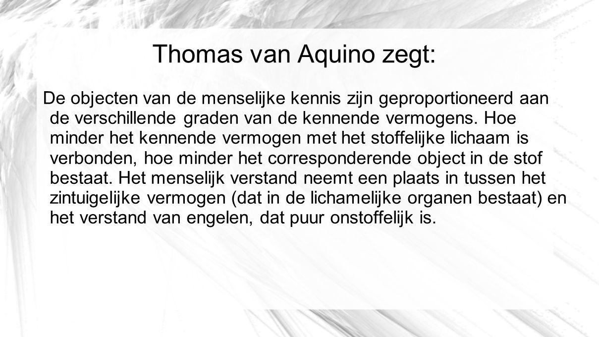 Thomas van Aquino zegt: