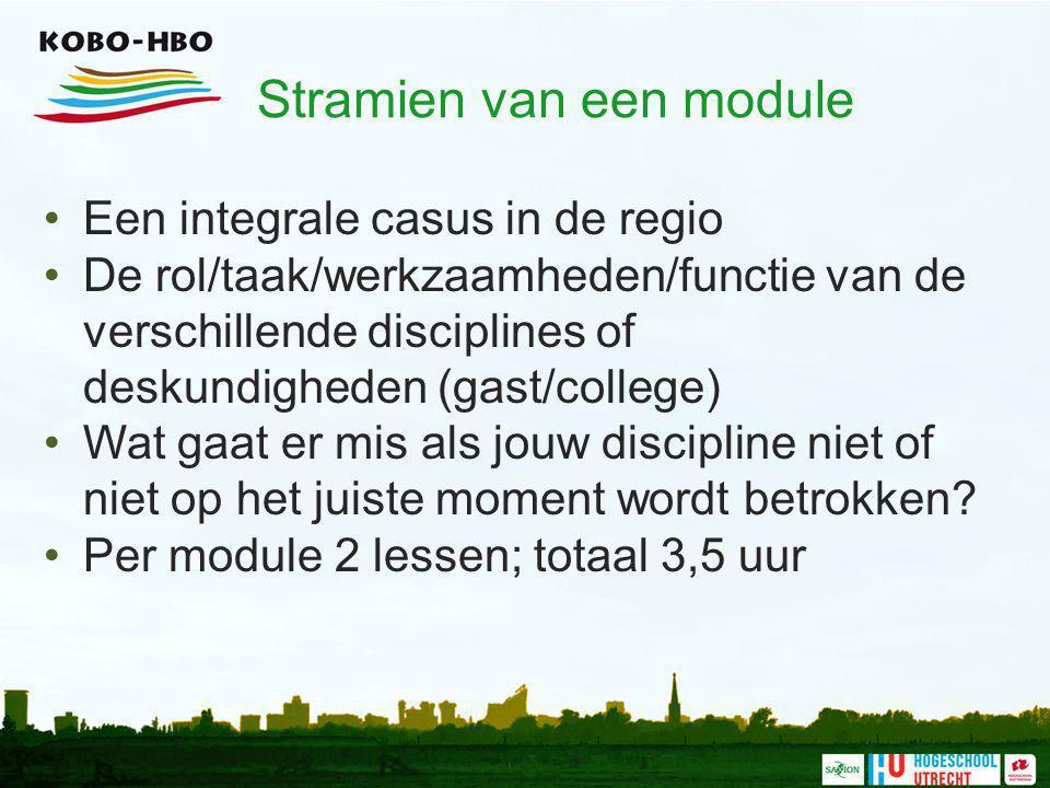 Stramien van een module