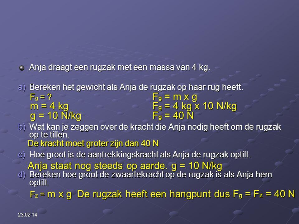 Anja staat nog steeds op aarde. g = 10 N/kg