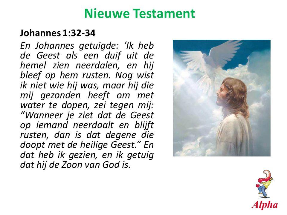 Nieuwe Testament Johannes 1:32-34