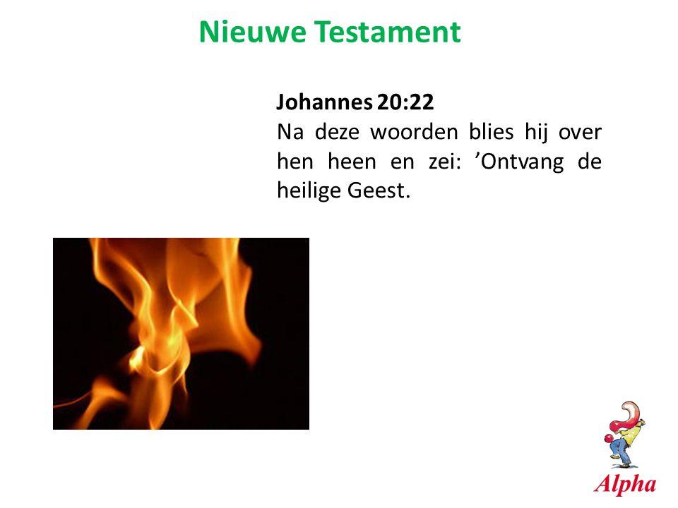 Nieuwe Testament Johannes 20:22