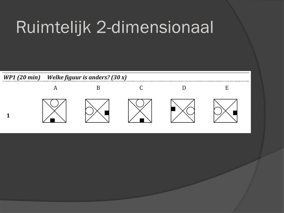 Ruimtelijk 2-dimensionaal