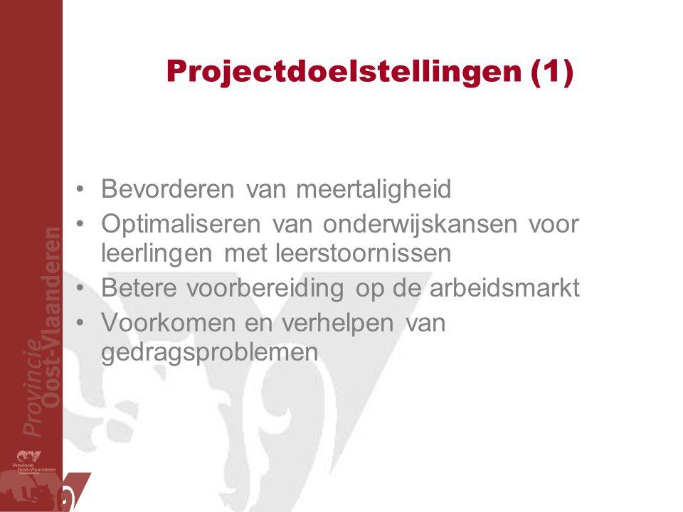 Projectdoelstellingen (1)