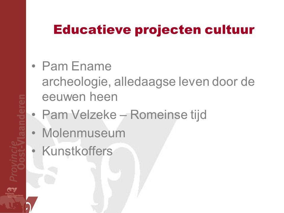 Educatieve projecten cultuur