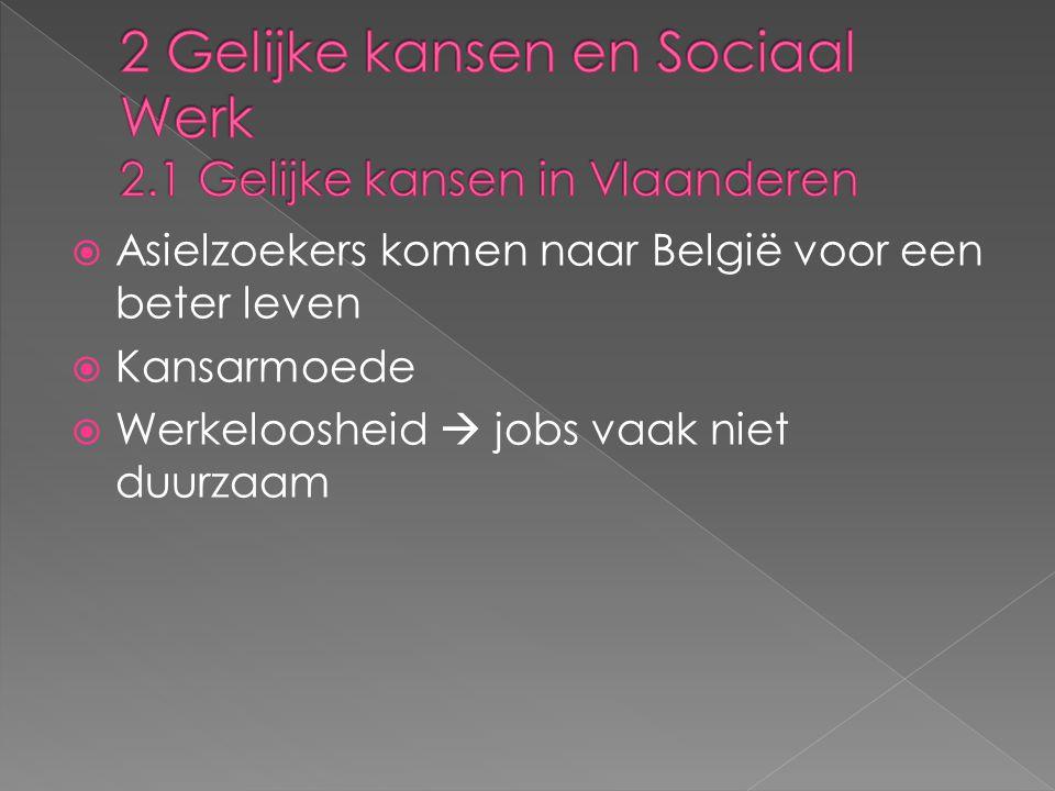 2 Gelijke kansen en Sociaal Werk 2.1 Gelijke kansen in Vlaanderen