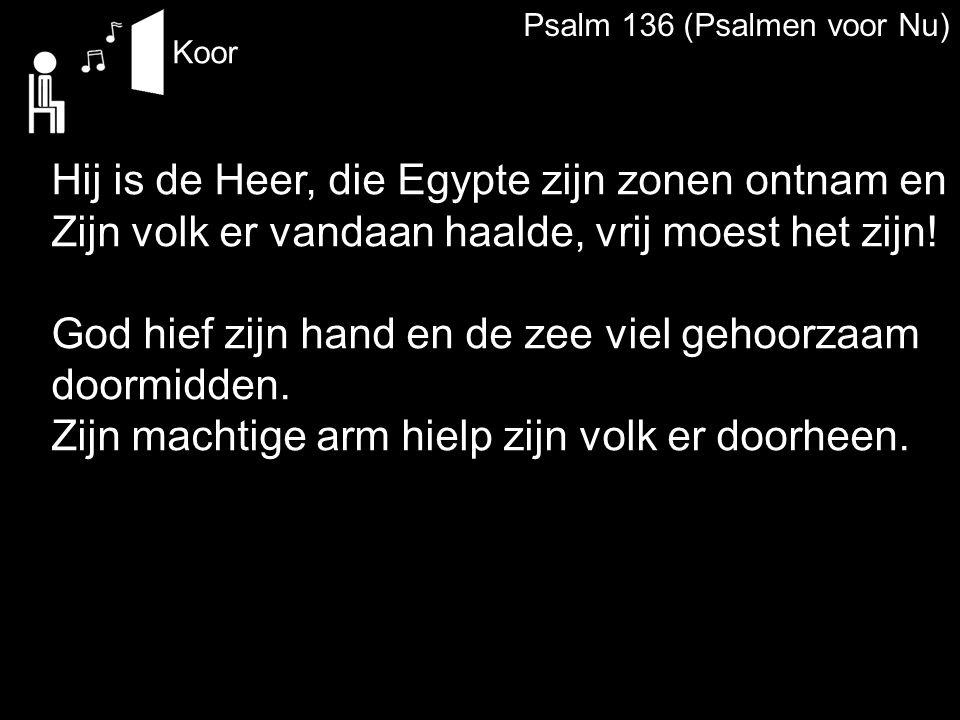 Hij is de Heer, die Egypte zijn zonen ontnam en