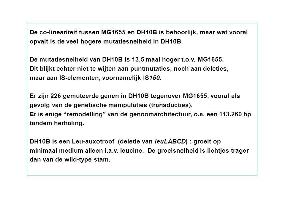 De co-lineariteit tussen MG1655 en DH10B is behoorlijk, maar wat vooral