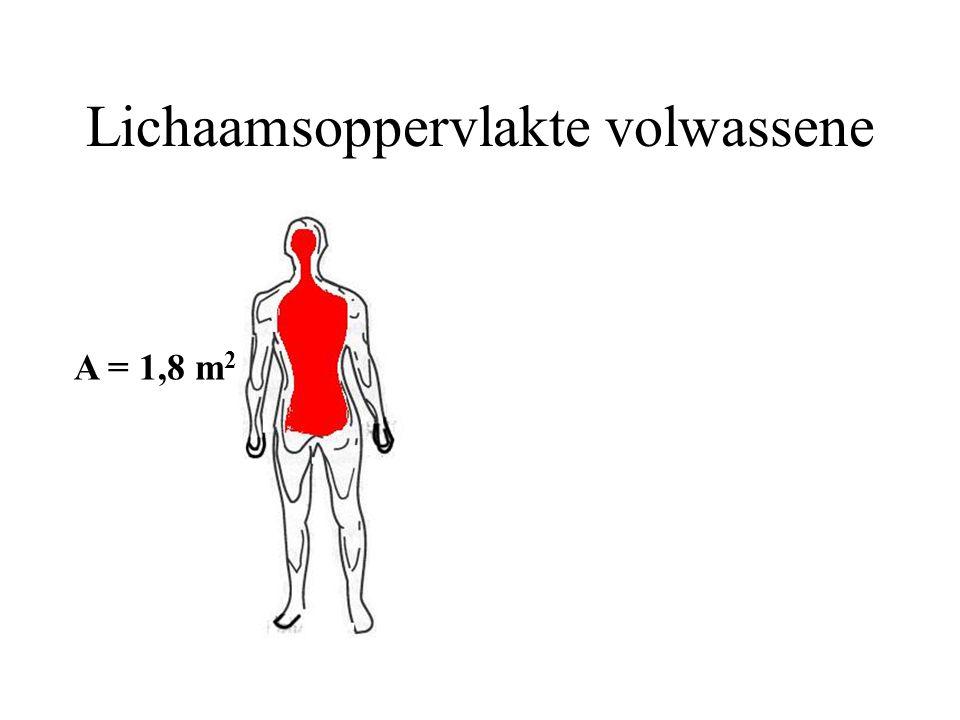 Lichaamsoppervlakte volwassene