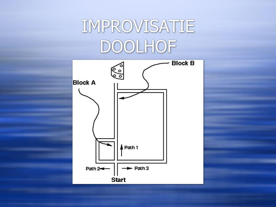 IMPROVISATIE DOOLHOF
