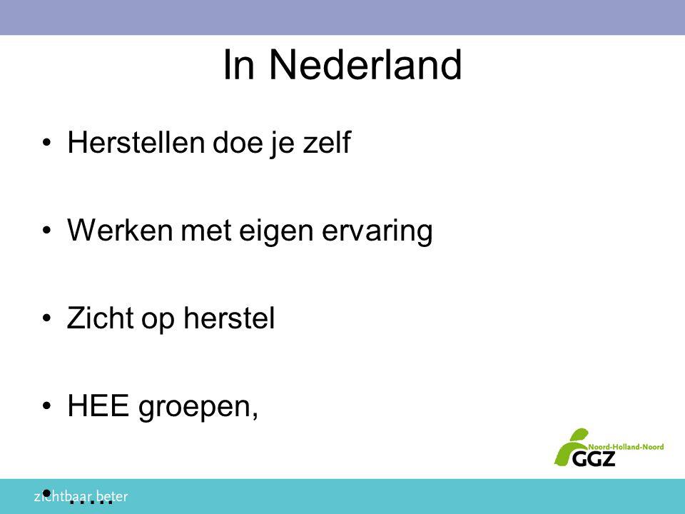 In Nederland Herstellen doe je zelf Werken met eigen ervaring