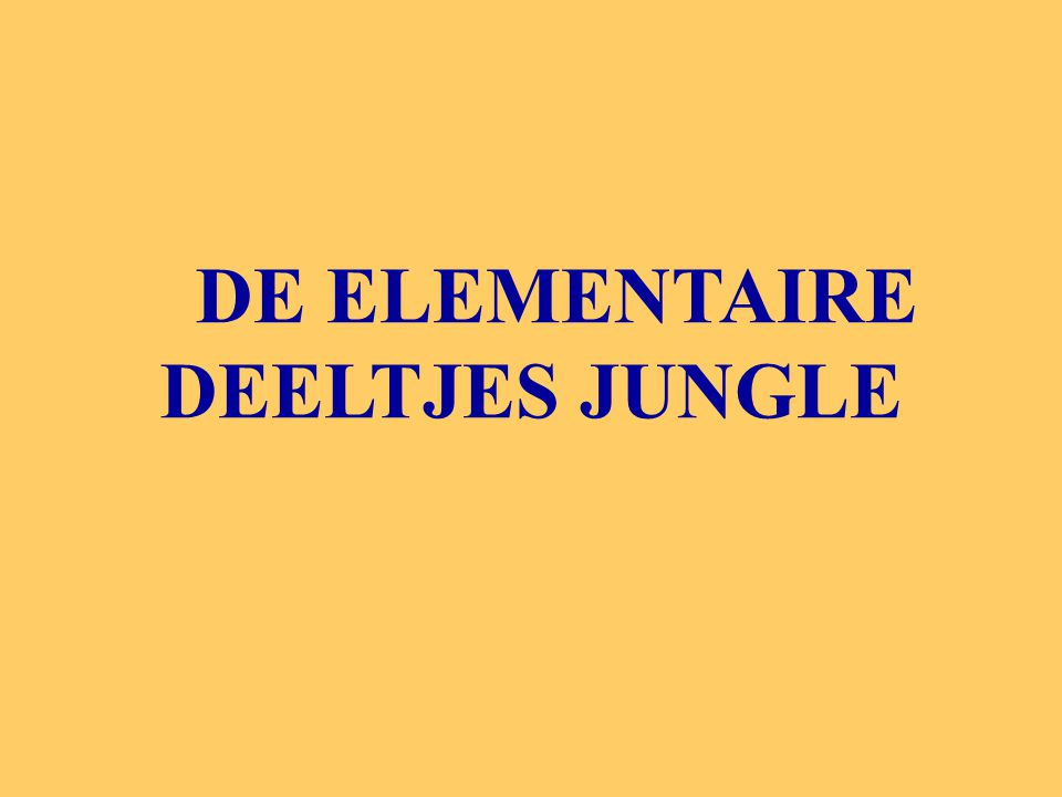 DE ELEMENTAIRE DEELTJES JUNGLE