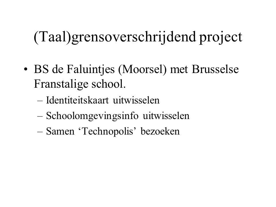 (Taal)grensoverschrijdend project
