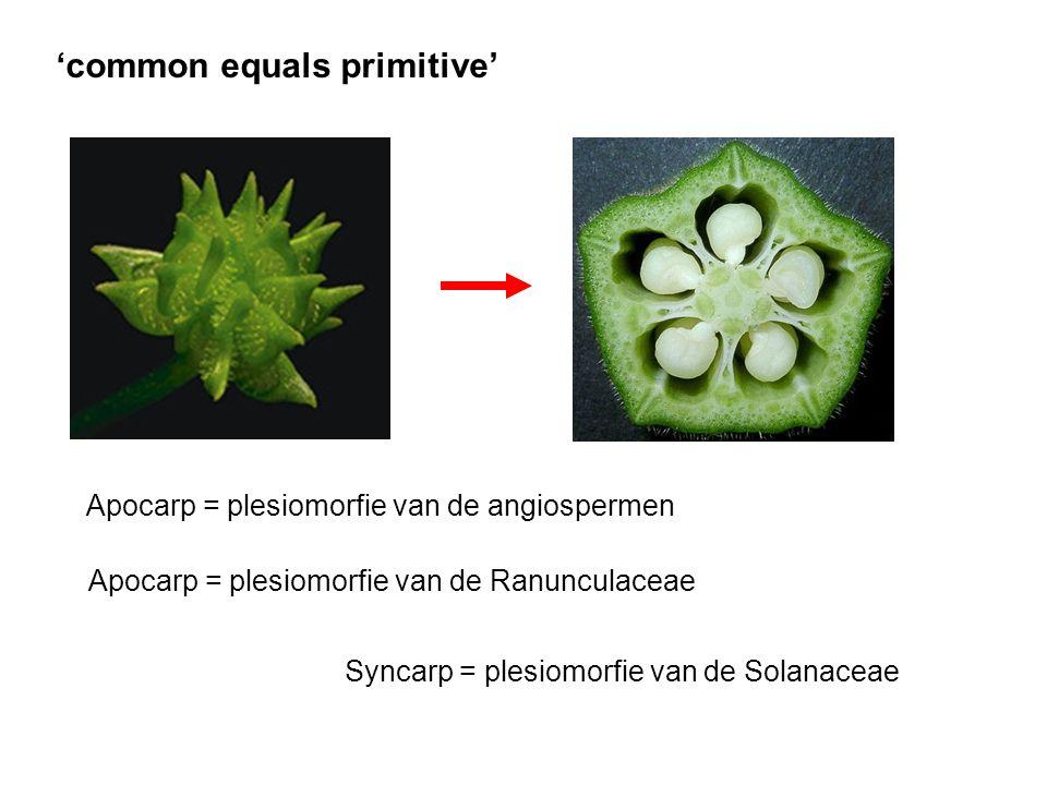 'common equals primitive'