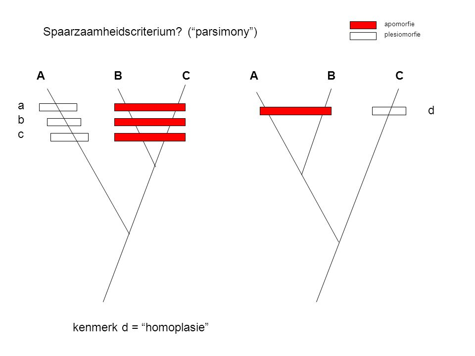 Spaarzaamheidscriterium ( parsimony )
