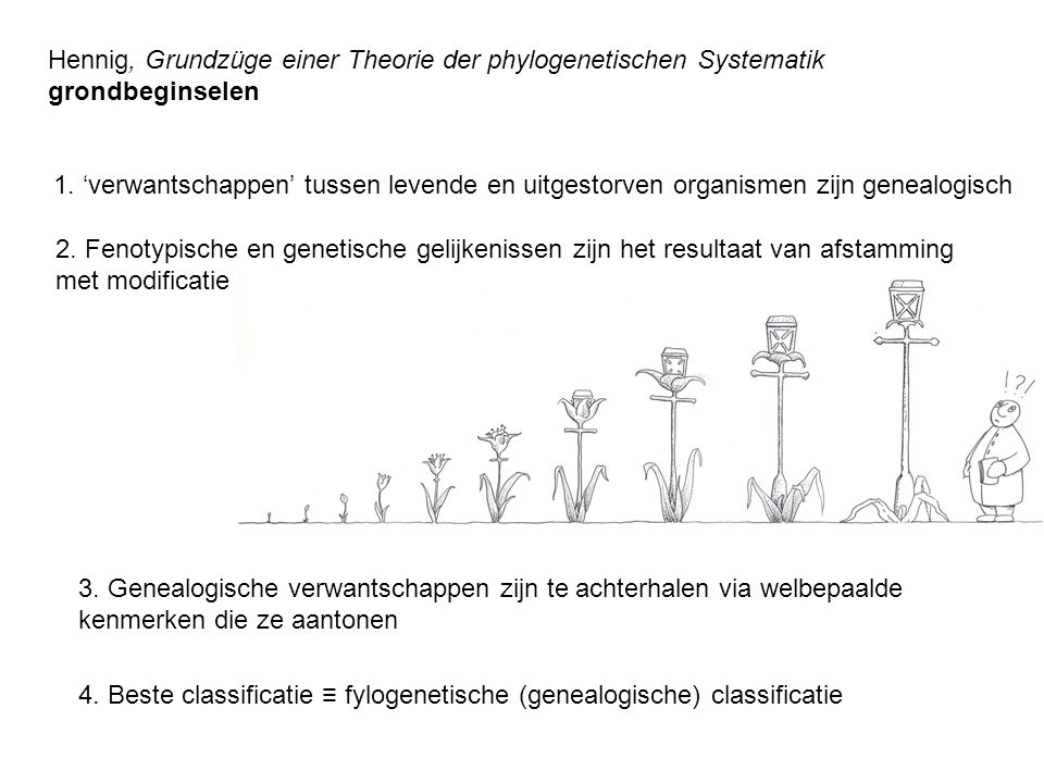 Hennig, Grundzüge einer Theorie der phylogenetischen Systematik