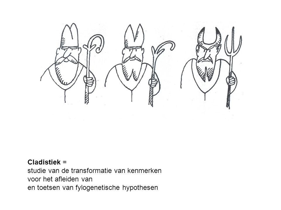 Cladistiek = studie van de transformatie van kenmerken.