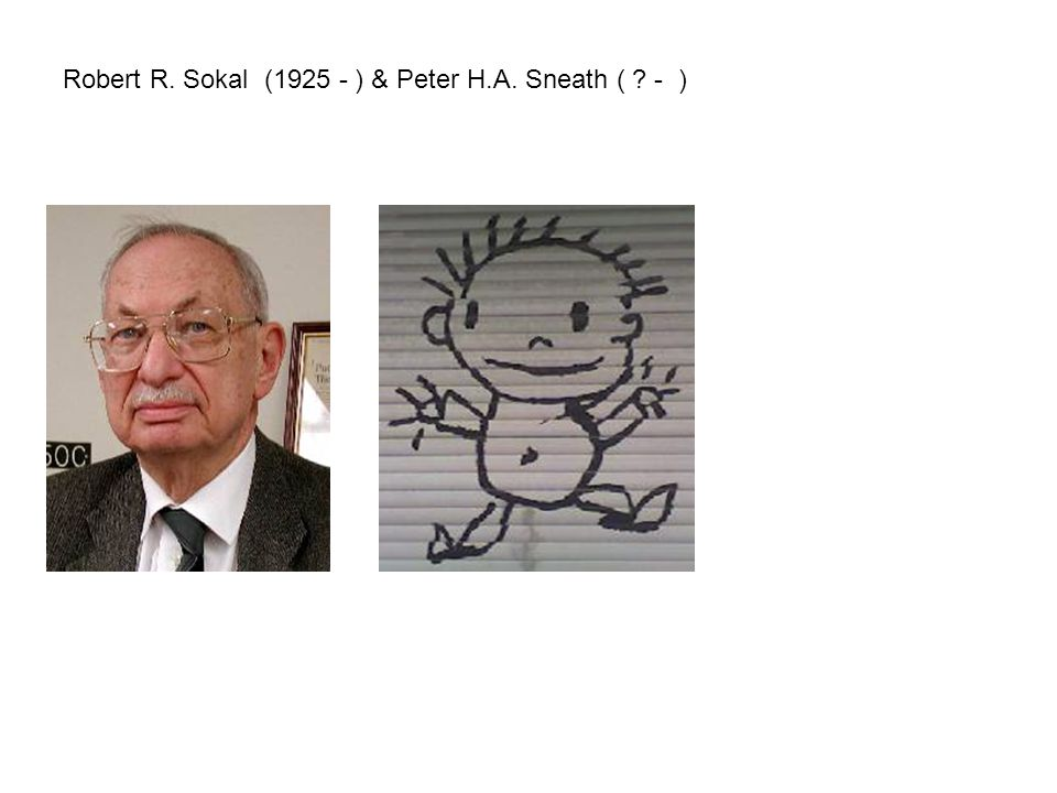 Robert R. Sokal (1925 - ) & Peter H.A. Sneath ( - )